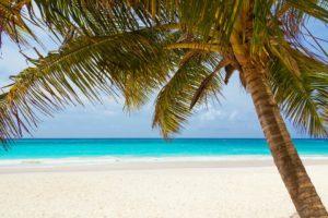 beach-84631_960_720
