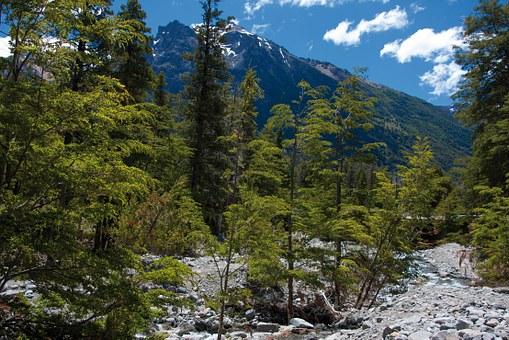 3. Circuito Andino, cruce de lagos - Bariloche