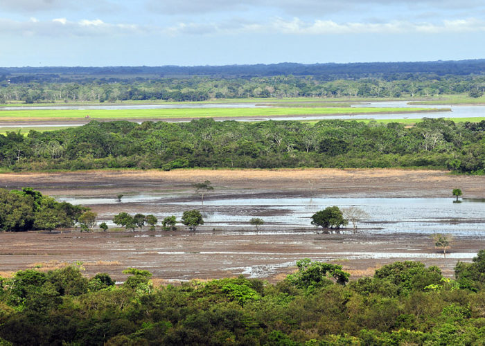 Llanos 1